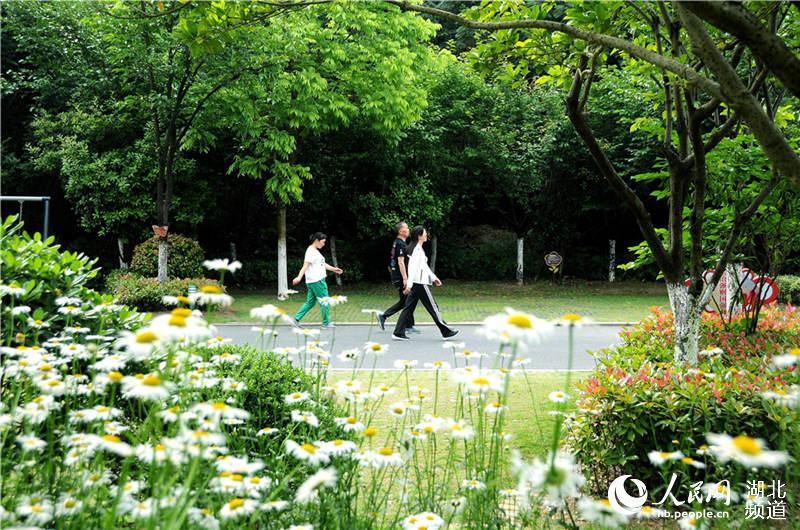 湖北十堰:推進城市綠道建設 讓民眾暢享山水之美.jpg