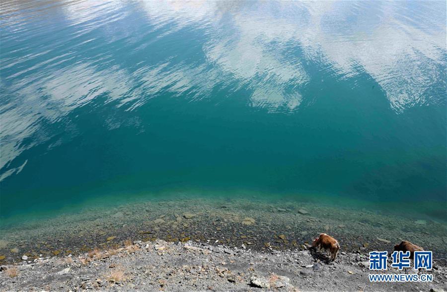 (環境)(9)西藏仍然是世界上生態環境最好的地區之一