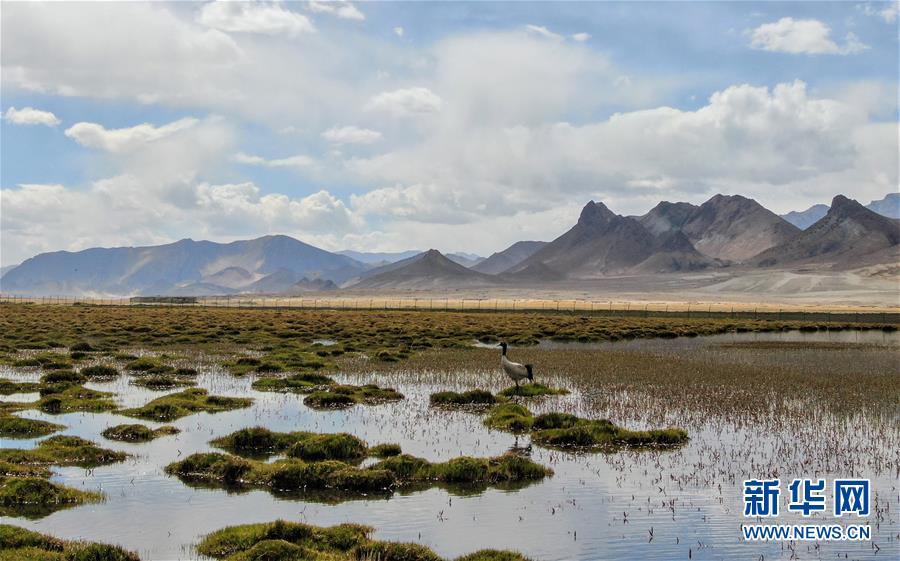 (環境)(14)西藏仍然是世界上生態環境最好的地區之一